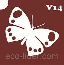 Трафарет для биотату V14, 6*6 см.