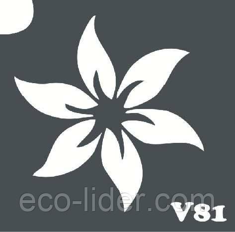 Трафарет для биотату V81, 6*6 см.