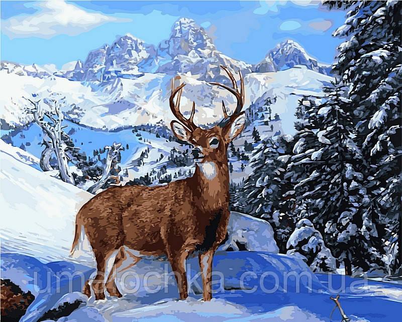 Набор для рисования Babylon Благородный олень, Худ. Вилсон Эрик 40х50 VP474