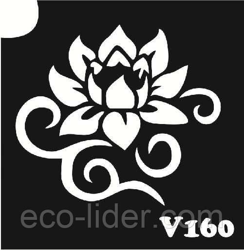 Трафарет для биотату V160, 6*6 см.