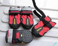 Супер-удобные кроссовки для бега PomPreece. Обувь для собак крупных пород.