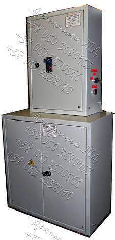 Я8901-4477 крановый ящик  ввода и защиты, фото 2