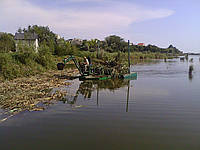 Очистка водоёмов от камыша (050) 395-35-71