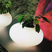 Настольная лампа Azzardo FLORA AT6118-3L