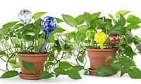 Колба для автоматического полива растений Aqua Globes Hand Blown Glass