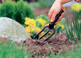 Посевной календарь для садовода на апрель 2016 года