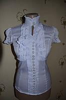Блуза 10381