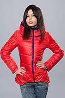 Женская демисезонная куртка. Код модели К-67-12-16. Цвет красный с электриком.