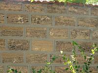 Кладка стен (ракушечник)