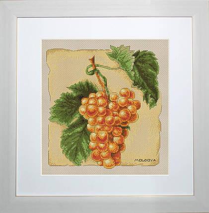 """Набор для вышивания нитками  """"Виноград"""", фото 2"""