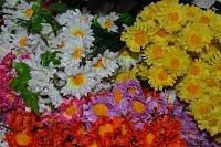 """Ветка из искусственных цветов """"Ромашка"""", белая"""