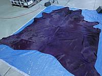 Синефиолетовая гламурная шкура коровы среднего размера, фото 1