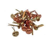 Брадсы для скрапбукинга ScrapBerry's Винтики золото-медь 6 мм, 25 шт.