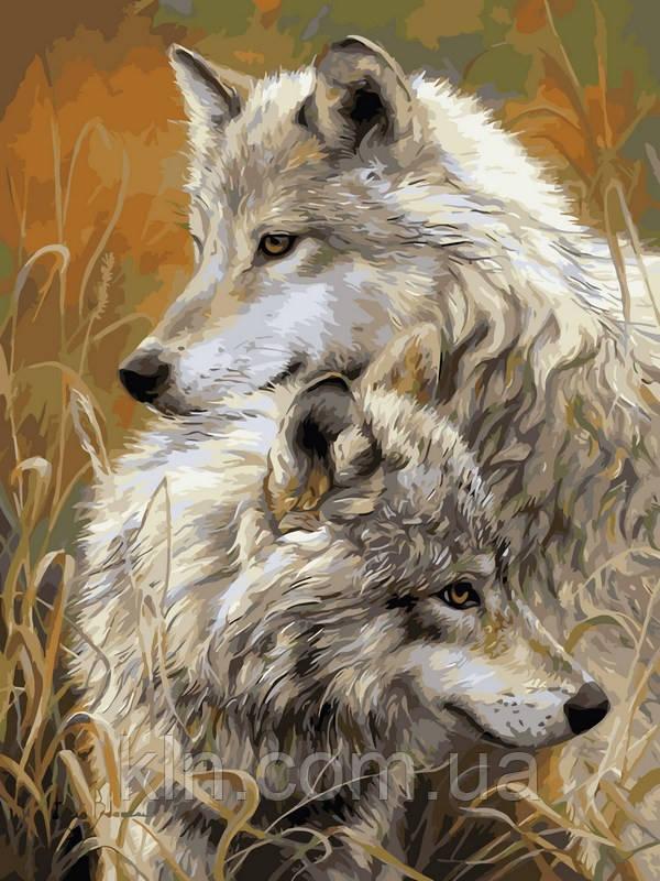 Картина по номерам Babylon Степные волки VK034 30 х 40 см
