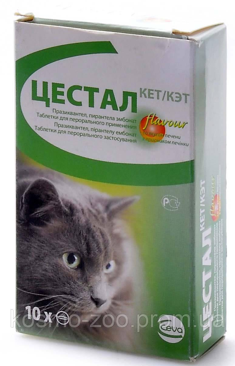 Антигельминтик Цестал плюс для котов, (противоглистный препарат) со вкусом печени, уп. 10 таб.