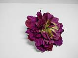 Фіолетовий квітка, фото 2