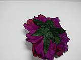 Фіолетовий квітка, фото 3