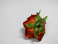 Роза алая, фото 1