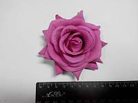 Роза розово сиреневая, фото 1