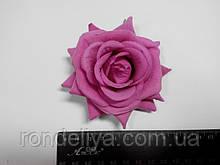 Роза розово сиреневая