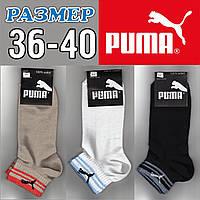 Носки женские демисезонные спорт  Puma 36-40р. ассорти НЖД-02363