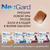NexGard (Нексгард) препарат новой эры против блох и клещей от компании Merial, Франция