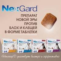 NexGard (Нексгард) препарат нової ери проти бліх і кліщів від компанії Merial, Франція