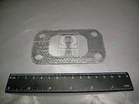 Прокладка переходника выпускного коллектора Д 260 (ММЗ). 260-1008026