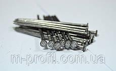 Гвозди строительные 2,5 * 60 мм фасовка 1 кг, фото 3