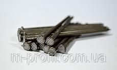 Гвозди строительные 4,0 * 100 мм фасовка 1 кг, фото 3