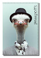 Оригинальная обложка на паспорт fp-171