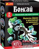 "Ранок Японский сад кристаллов ""Бонсай"" арт 0349"