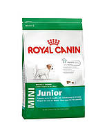Сухий корм для собак ROYAL CANIN Mini junior 8 кг