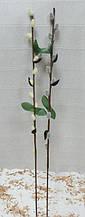 Веточка Вербы (ивы) 30см, цвета в асортименте