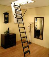 "Чердачная лестница  ""OMAN""  Metal T3, (SOLID TERMO) 1200х600х2800, Харьков"