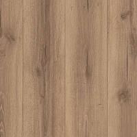 Дворцовый Дуб, Планка L0205-01776