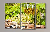 "Модульная картина на холсте ""Зеленый виноград"""