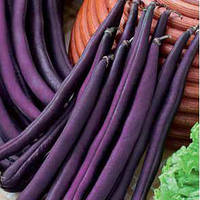 Фиолетовая / violet  — фасоль спаржевая, hortus 5000 грамм