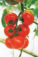 КРИСТАЛ F1 / CRISTAL F1 – томат индетерминантный, Clause 1 грамм семян