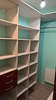 Просторная гардеробная комната, фото 1