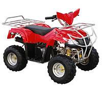 Детский квадроцикл ATV50-003E, мотор 800W 36V