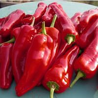 РУБИНОВАЯ / RUBINOVAYA — перец сладкий, Moravoseed  50 грамм семян