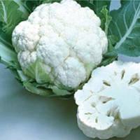 Уайт эксель f1 / white excel f1 — капуста цветная, sakata 1000 семян