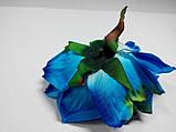 Блакитна троянда, фото 3