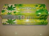 Cannabis Darshan, фото 5