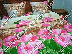 Постельное белье ранфорс - полуторный комплект (0908)