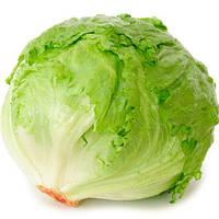 Айсберг гранди  / iceberg grandi  — салат, hortus 500 грамм, банка