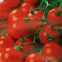 САДОВАЯ ЖЕМЧУЖИНА / PEARL GARDEN  — томат детерминантный, Satimex 10 грамм