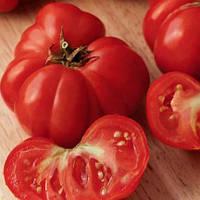 ФИОРЕНТИНСКИЙ / FIORENTINSKY  — томат детерминантный, Euroseed 500 грамм