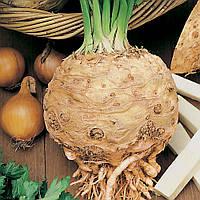 Пражский гигант / prague giant — сельдерей корневой, hortus 500 грамм
